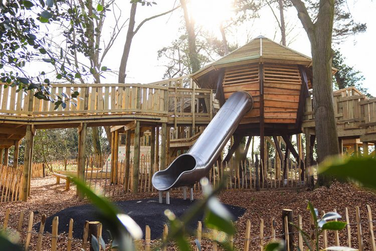 The slide and tree house at the Challenge Woods in Norwich